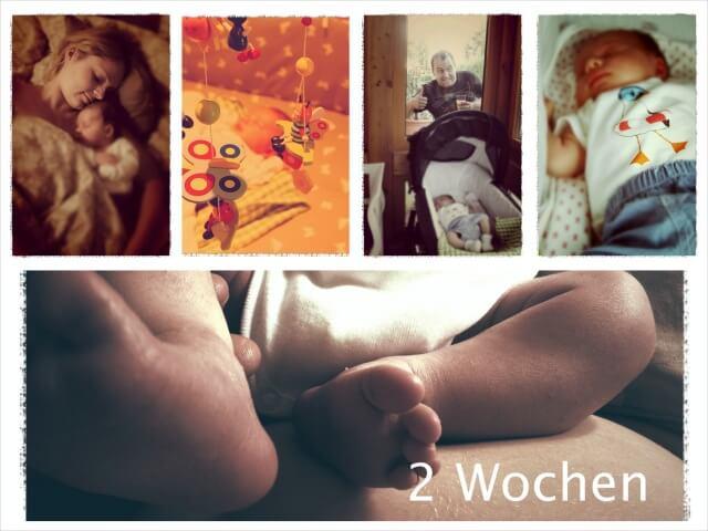 Woche_zwei_4_Collage
