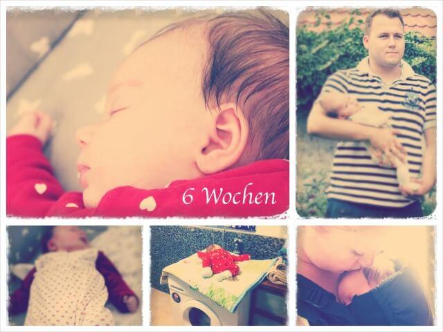 Ida_Woche_sechs_Collage