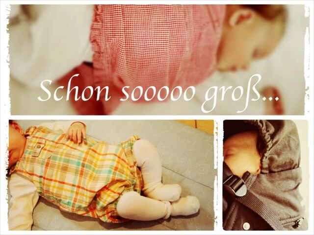 Schon_so_gross_Collage