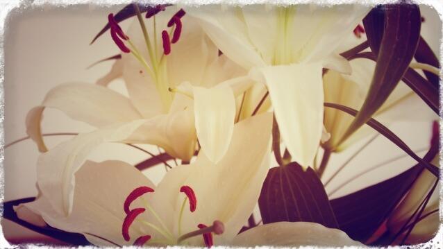 Blumen_1