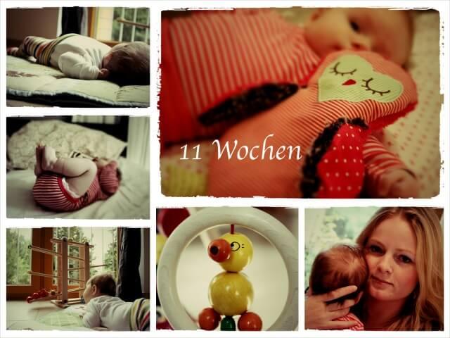 Ida_Woche_11_Collage