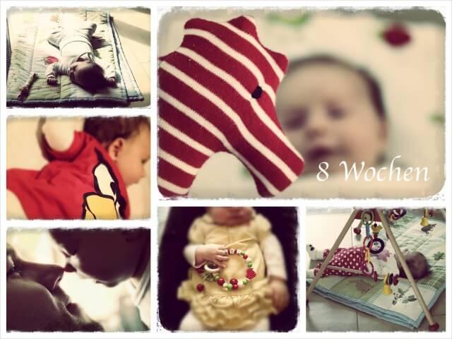 Ida_Woche_acht_Collage