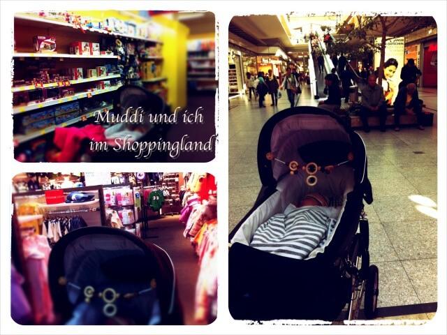 Ein_Ausflug_mit_Baby_Collage