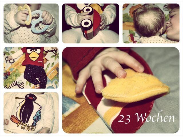 Ida_dreiundzwanzig_Wochen_Collage