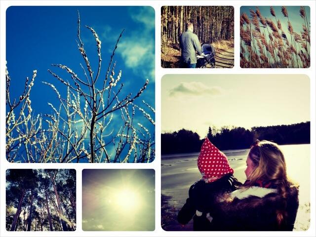 Freuhling_2014_Collage