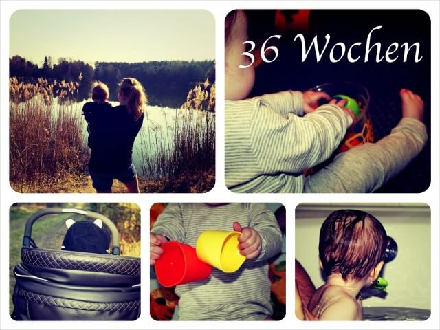 Woche_36_Collage