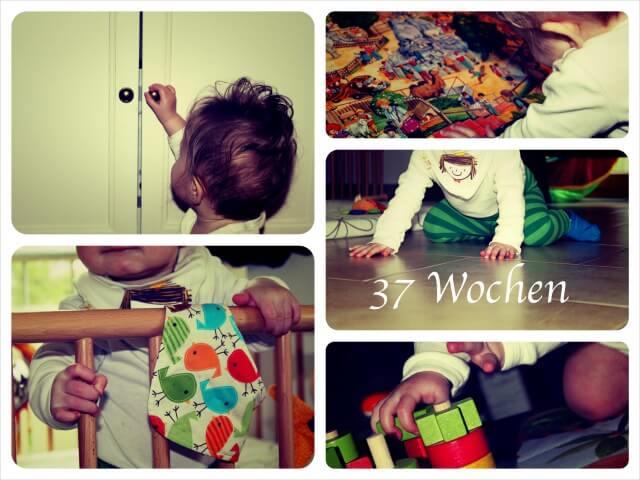 Woche_37_Collage