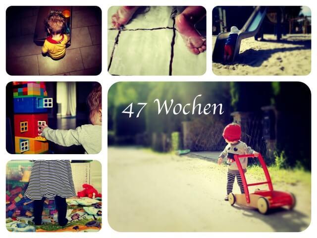 Woche_47_Collage