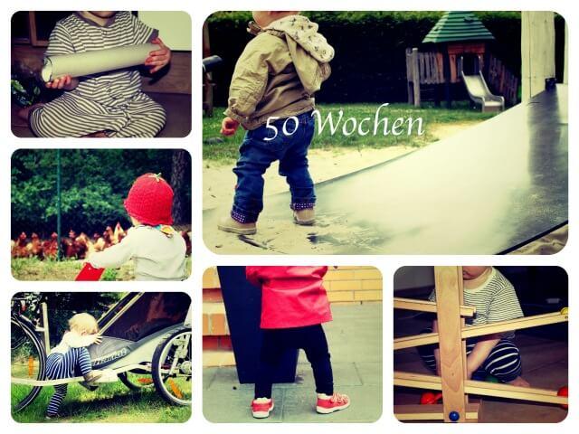 Woche_50_Collage