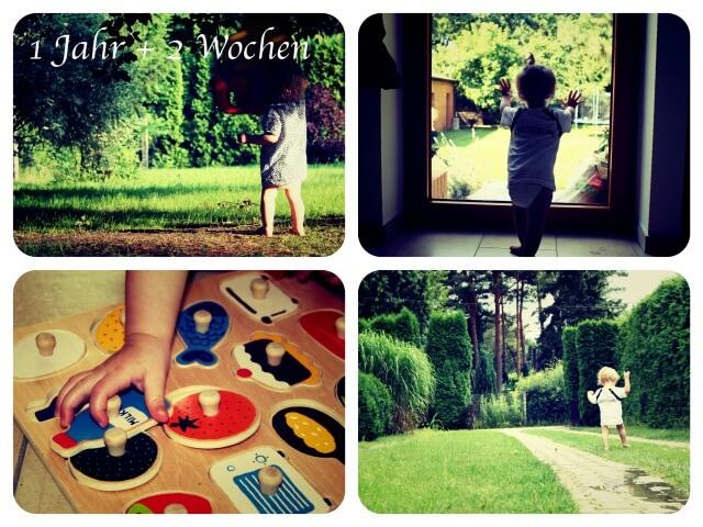 Woche_54_Collage