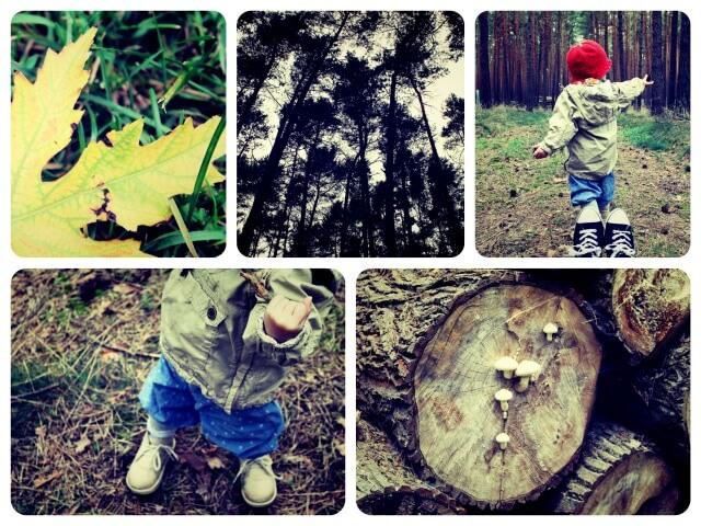 Naturkind_Collage