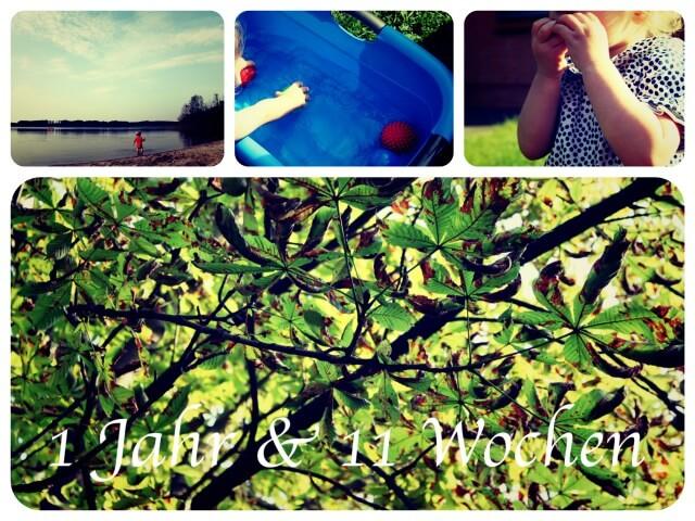 Woche_63_Collage