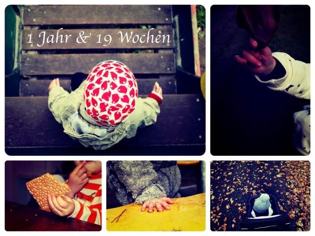 Woche_71_Collage_1