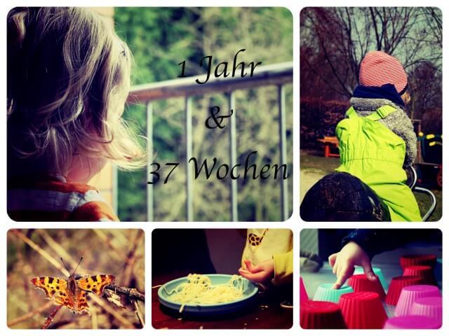 Woche_89_Collage