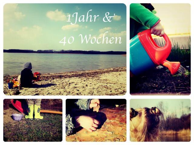 Woche_92_Collage