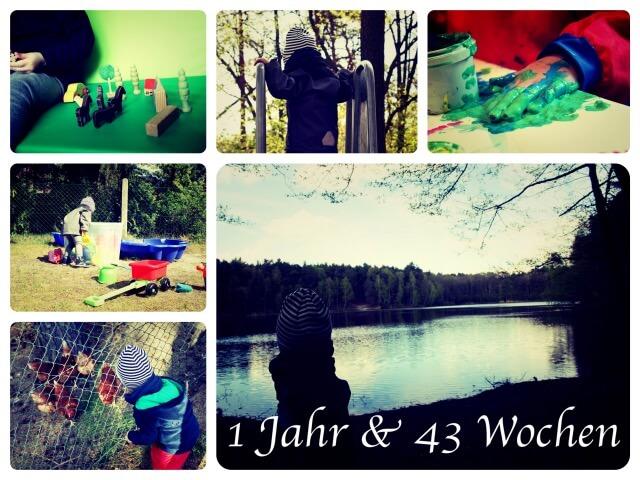Woche_95_Collage