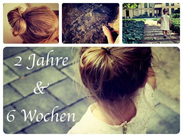 2_Jahre_6_Wochen_Collage