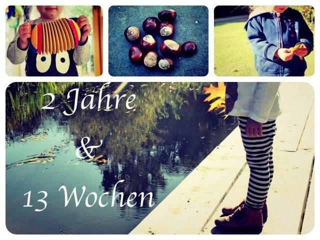 2_Jahre_13_Wochen_Collage