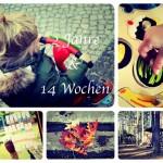 2 Jahre & 14 Wochen – Rückblick