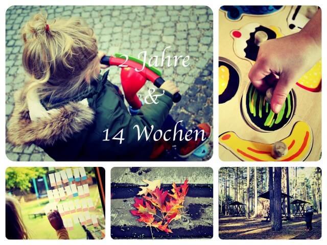 2_Jahre_14_Wochen_Collage