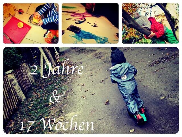 2_Jahre_17_Wochen_Collage