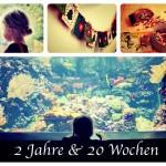 2 Jahre & 20 Wochen – Rückblick