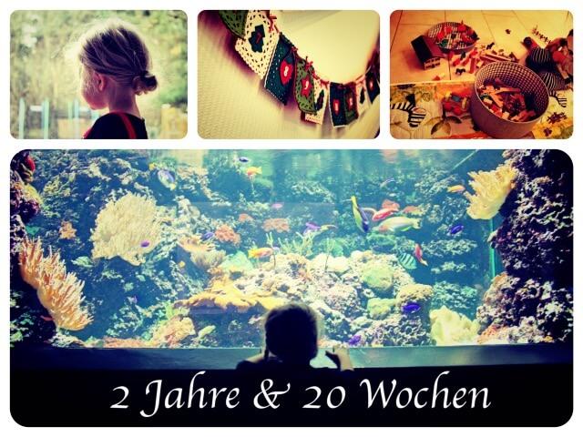 2_Jahre_20_Wochen_Collage