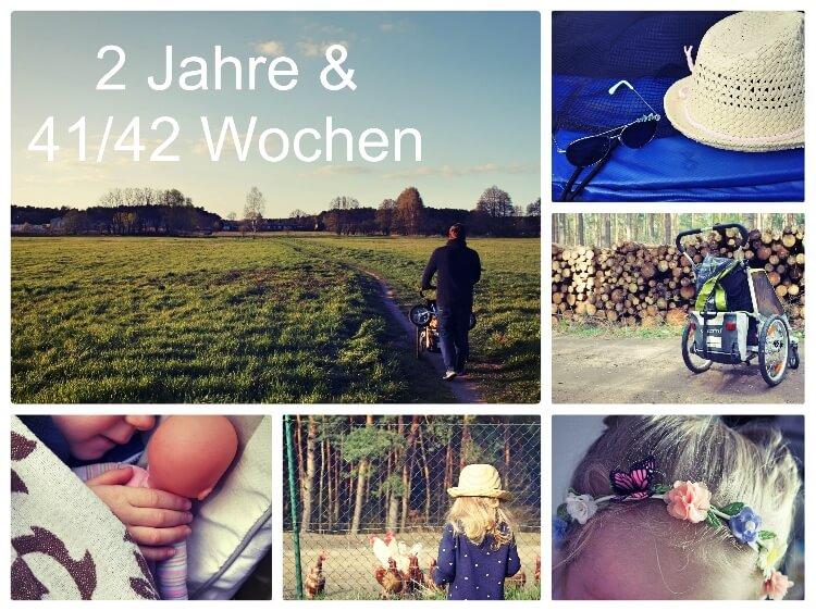 2_Jahre_42_Wochen_Collage