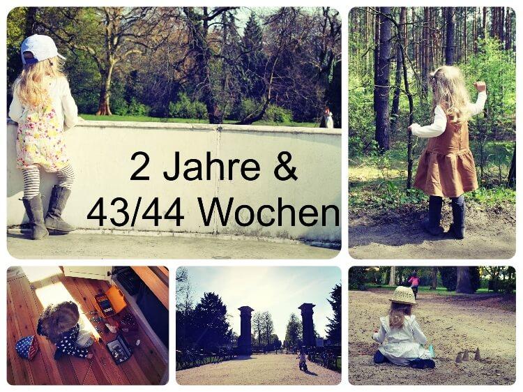 2_Jahre_43_Collage
