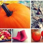 Der Herbst ist da – und nun? BASTELZEIT!!!!