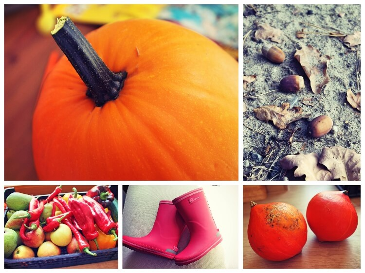 herbst_collage