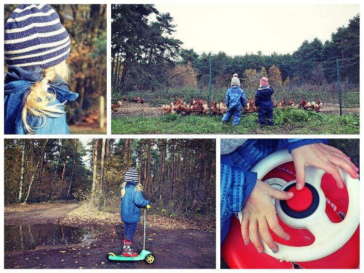 november_1_collage