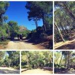 Ausflugtipp Mallorca - Playa des Coll Baix mit Kind und Familie