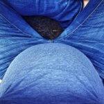 Schwangerschafts-Update 21.-27. Schwangerschaftswoche